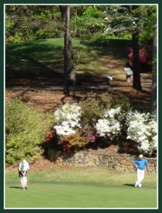 28759-golf